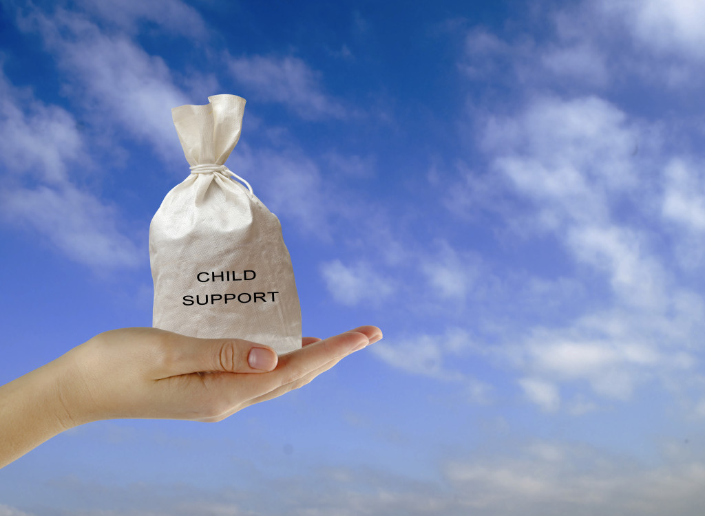 greenville south carolina child support lawyer